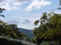 Pantanal sud (Brésil en camping-car)