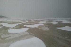 Sortie dans le Grand Nord le dimanche 20 janvier 2013