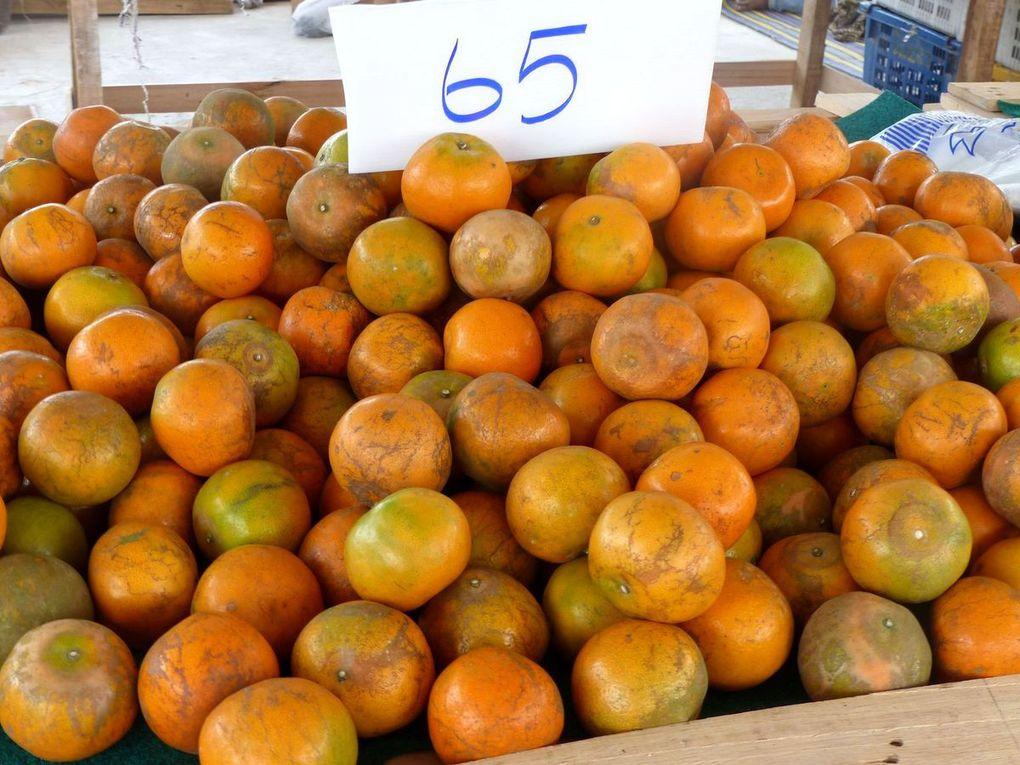 Fruits de saison (19-09)... ou pas ! - La production thaïlandaise de fruits