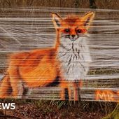 Cling film artist 'overwhelmed' by Pershore reaction to murals