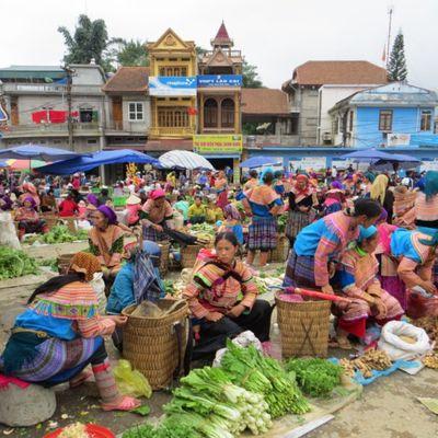 Marché de Bac Ha et Trekking autour de Sapa