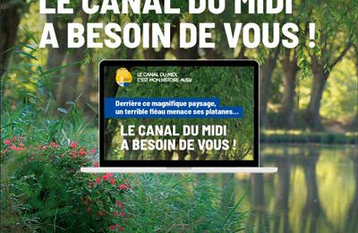 Appel national aux dons  en faveur du canal du Midi - objectif : 2 000 arbres replantés