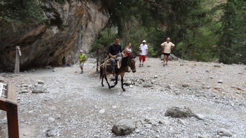 Excursion aux Gorges de Samaria