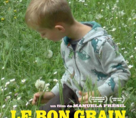 📽️  LE BON GRAIN ET L'IVRAIE ...