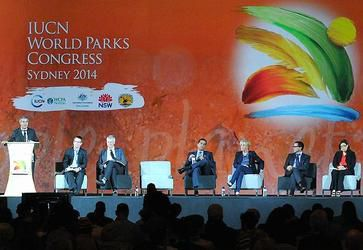 """The """"Parks"""" opening plenary hosted a panel discussion on the future priorities for protected areas, Nov. 12, 2014 (Photo courtesy Earth Negotiations Bulletin)"""