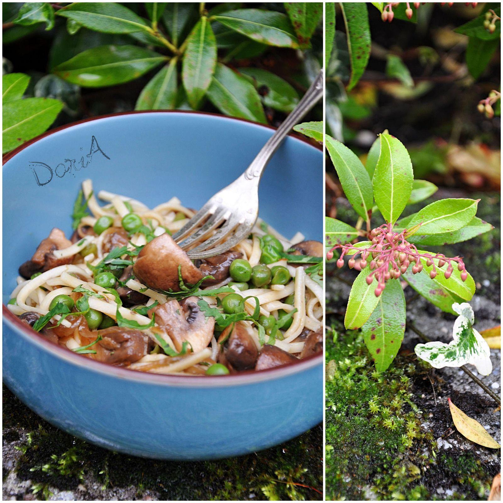 Nouilles Thaï aux champignons sautés à la sauce soja