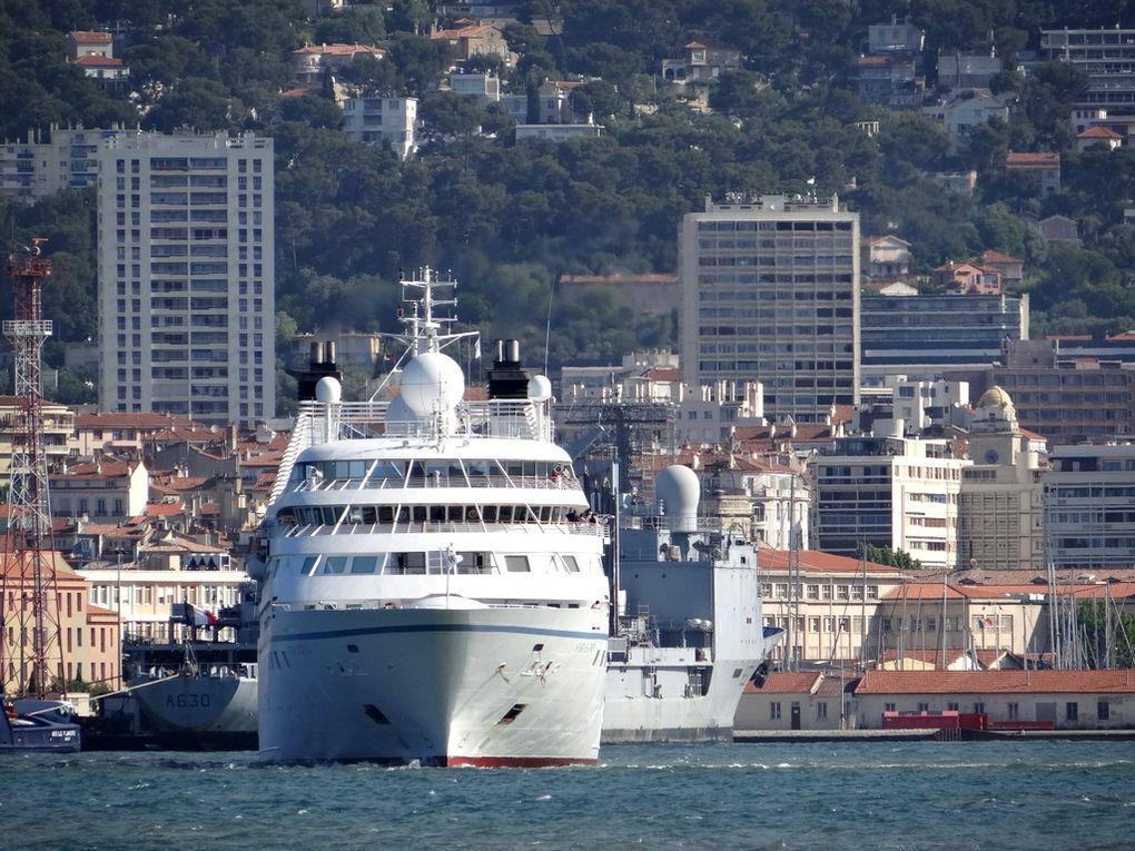 STAR LEGEND , arrivant à Toulon le 31 mai 2016