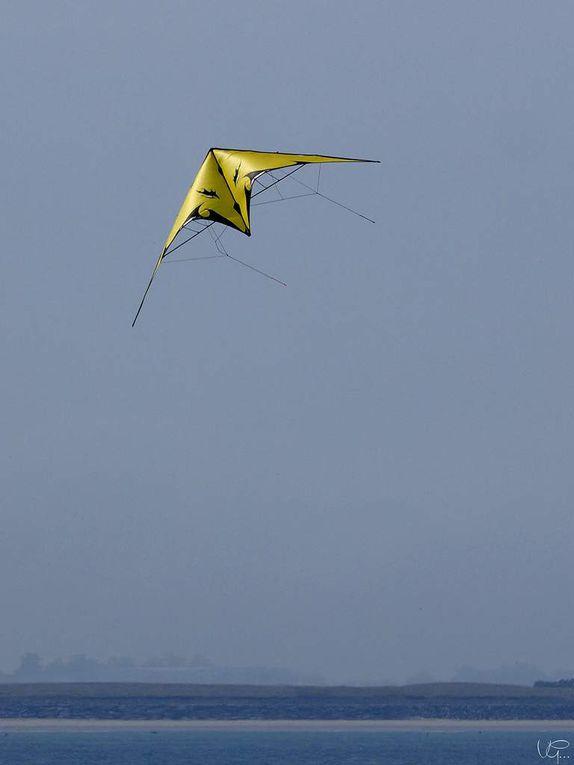 Des cerfs-volants dans le ciel de La Turballe