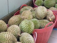 stand de fruits, les mangues,les durians -fruit stand, mangoes, durians