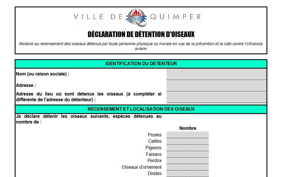 Le formulaire de déclaration, sur le site de la ville
