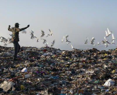 Suzane : artiste engagée contre le réchauffement climatique