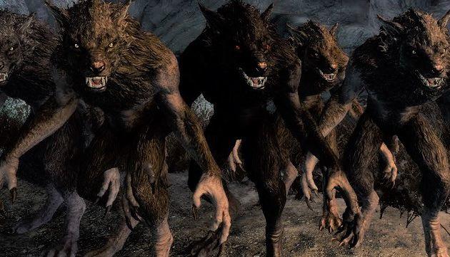 Explication de texte : Quand c'est flou, c'est qu'il y a un loup... Sur Sauvons Roubaix, quand ça paraît flou, c'est qu'il y a des Roubaignots-Garous dans le coup !!!