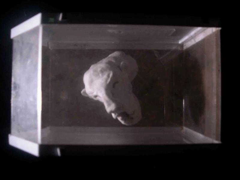 """installation art contemporain, série sur l'ethnologie de l'insignifiant, forme latente: """"méronymie sans visage""""."""