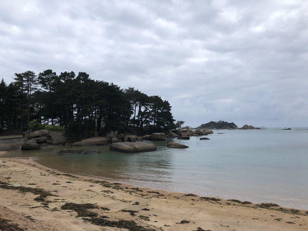 Randonnée à Trégastel et l'île Renote.