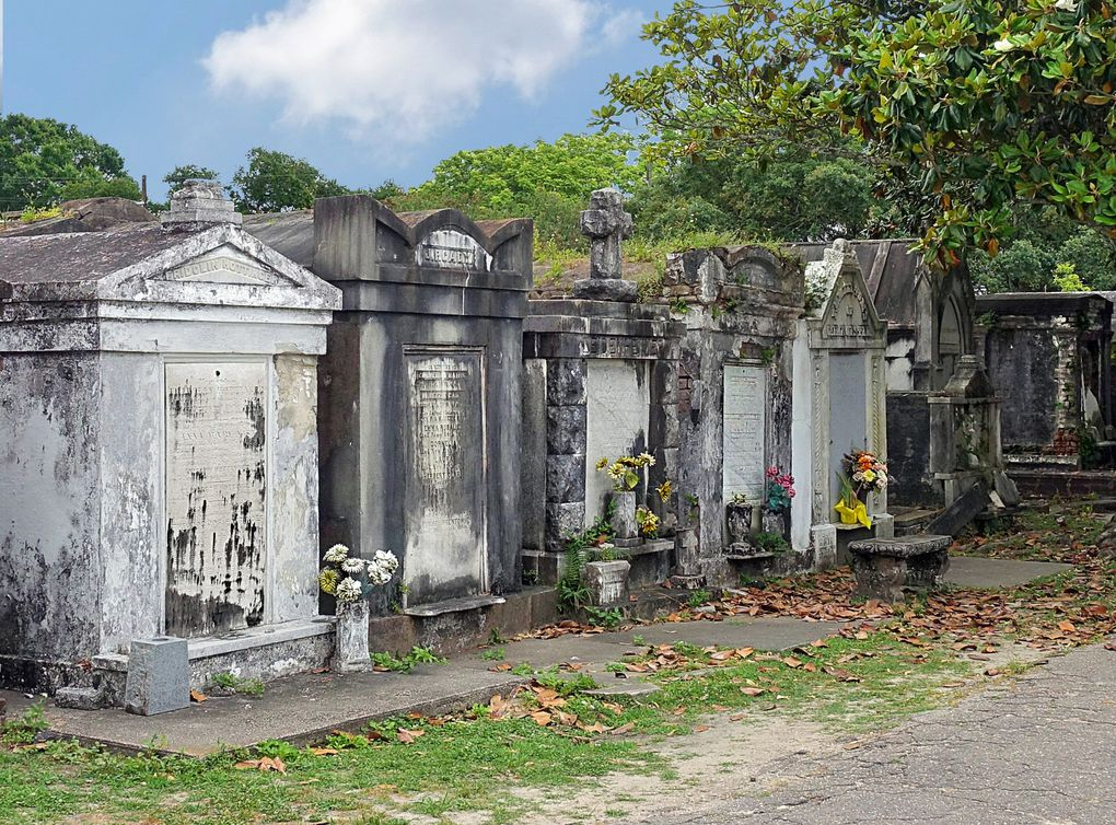 Diapoma : Lafayette Cemetery N°1
