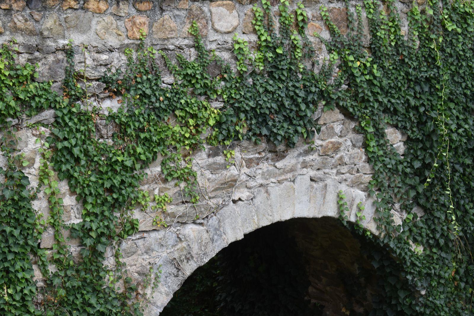 La source Sainte Vérène