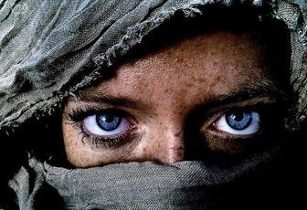 I 5 STELLE HANNO RAGIONE: IL CONO GELATO GLOBALE E' AVVELENATO - DI DIEGO CUGIA