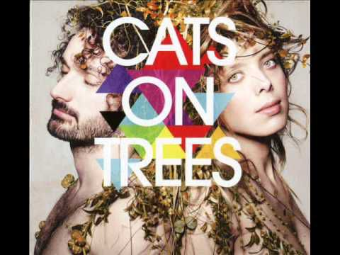 Cats on trees - Witchita