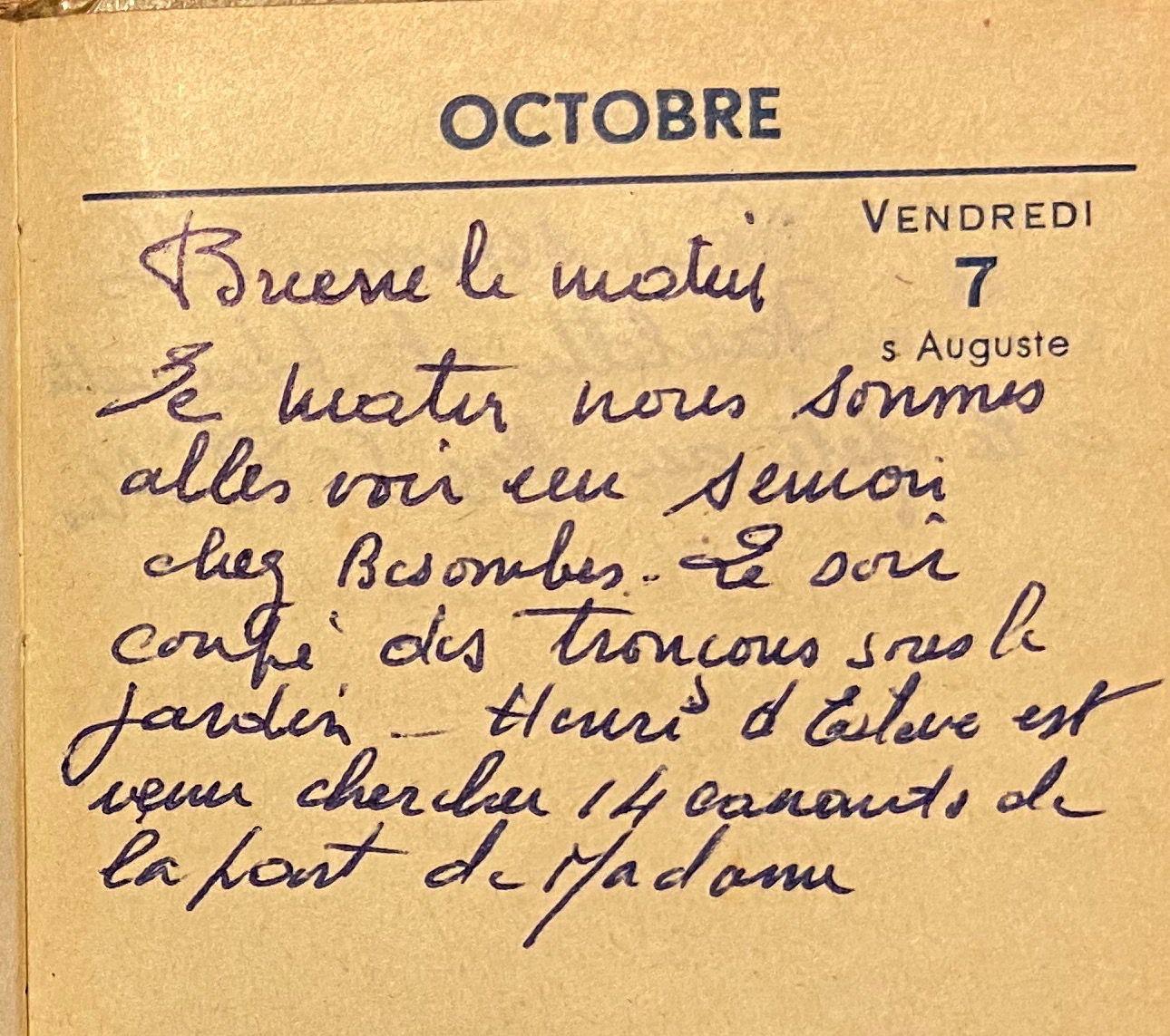 Vendredi 7 octobre 1960 - le semoir et les canards de Madame