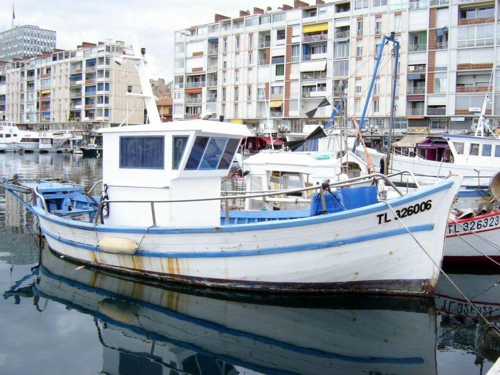 PIERROT  TL323006 , dans le port de Toulon
