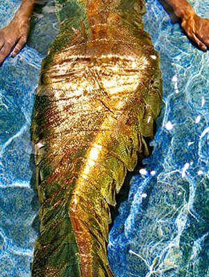 #Gold Mermaid @luxurydotcom