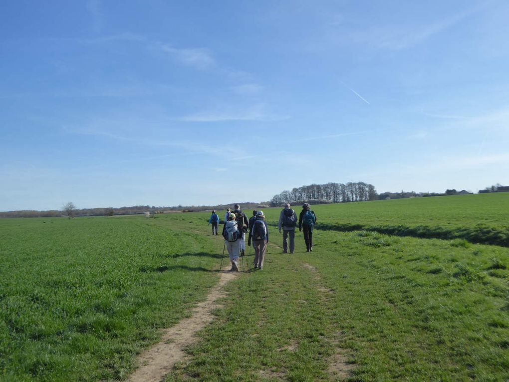 Randonnée de Tournan-en-Brie à Guérard - 26,3 km.