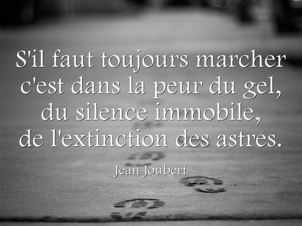 Florilège - Jean Joubert