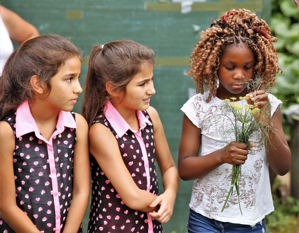 Den jungen Besuchern machte es sichtlich Spaß, den Duft und Geschmack der ausgewählten Heilpflanzen zu probieren.  Sie waren eifrig bei der Sache und befolgten auch diszipliniert die Bitte, nicht auf die Beete zu gehen und nicht selbst Pflanzen abzumachen.