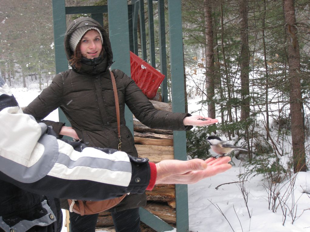 Album - Activites d'hiver