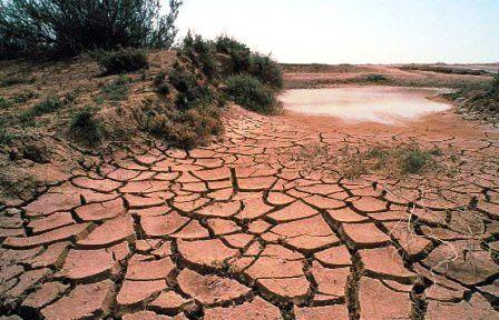 Imágenes sobre efectos del cambio climático.- El Muni.
