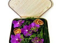 Fresh Flowers Boxes By Koclico