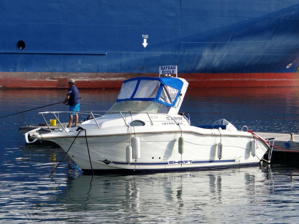AMBRE MARINE , bateau école à la Seyne sur mer