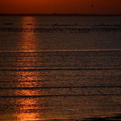 lndi soleil orange