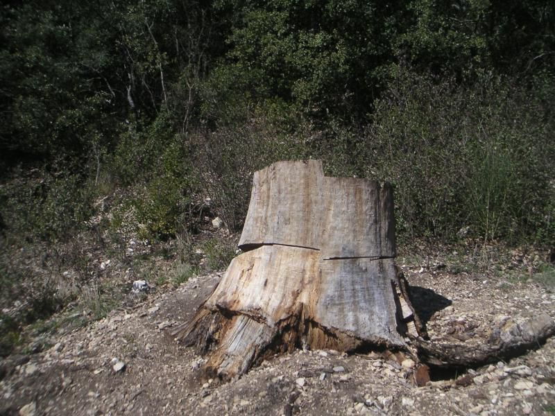 De Lauris, combe de Sautadou, Cap Serre