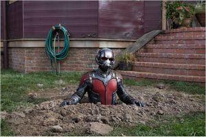 critique de ANT-MAN