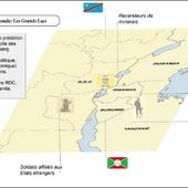 Géopolitique de l'Afrique. RDC Minerais de sang et néocolonialisme en République Démocratique du Congo