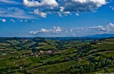 Le mythique Barolo en Italie