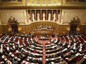 Le Parlement : Assemblée Nationale et Sénat