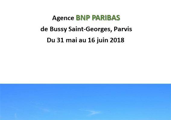 """Catalogue de l'exposition """"Bussy & Roses"""""""