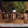 Tahtib traditionnel : Entre calme et agitation, il choisit le leurre !
