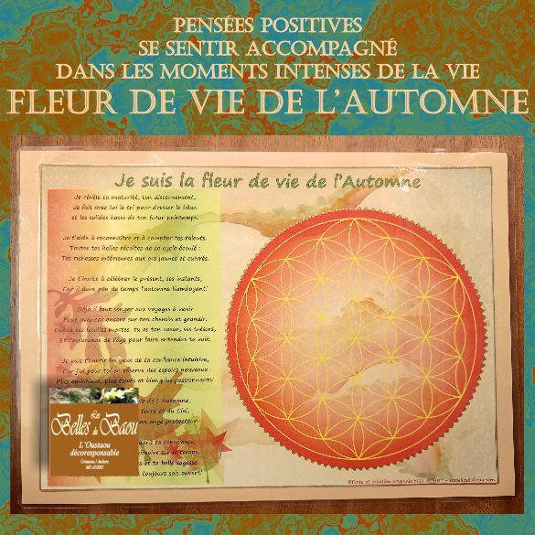 fleurs de vie / pensées  positives / mantras