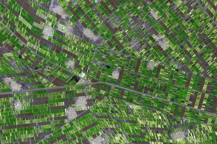 Quiz satellites d'observation et environnement : l'image mystère pour novembre 2011