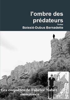 Les enquêtes de Fabrice Nabet