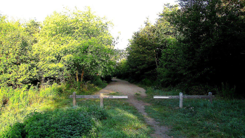 carrefour_Route Tournante du Grand Parc_Chemin de Saint-Corneille