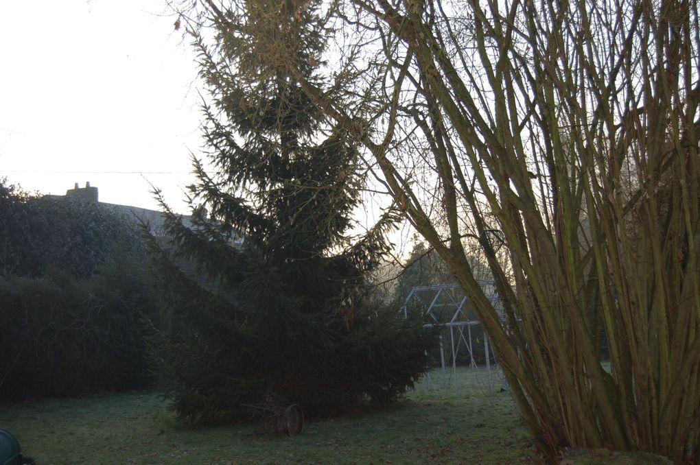 Album - Nature-et-jardin-9