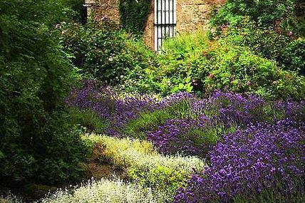 Cottage in Provence,