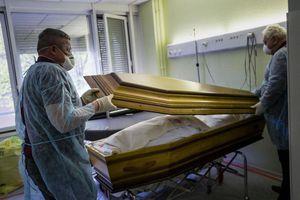 """La pandémie de Covid-19 """"aurait pu être évitée"""", selon des experts indépendants"""