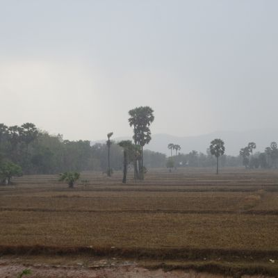 First rain in Peace Village