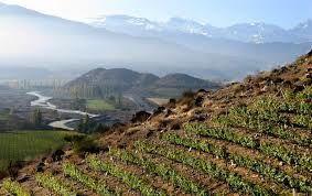 La région viticole de L'Aconcagua au  Chili