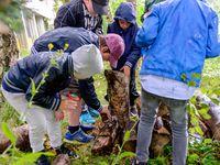 Anatole France - Relais Nature Tourcoing (11 Août)